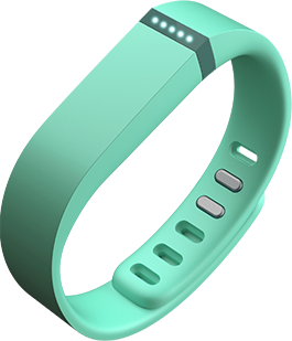 Fitbit Flex in Teal