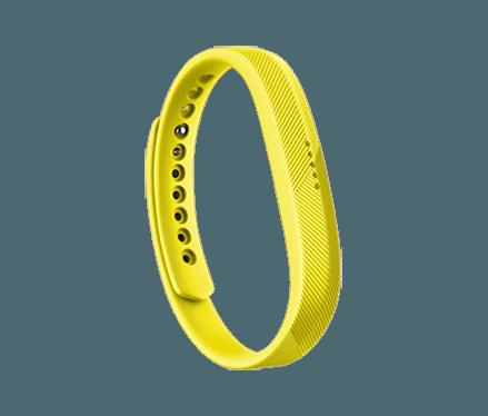 Bracelet Collection Classique Fitbit Flex 2™